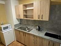 kuchyň - apartmán k pronajmutí Štítary