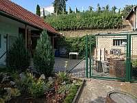 Vinařství a vinice - chalupa k pronájmu Šardice