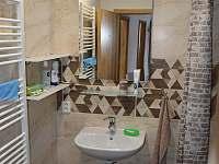 koupelna - apartmán k pronajmutí Rakvice
