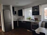 Kuchyň - apartmán k pronájmu Rakvice