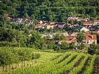 Pohled z vinohradu - Žádovice