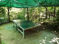 Stolní tenis u chaty