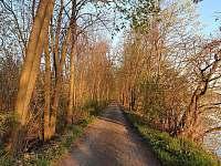 Jaroslavické rybníky jen 150 metrů od objektu -