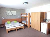 Pasohlávky ubytování 22 lidí  pronajmutí