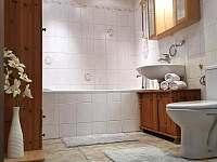 koupelna - apartmán k pronajmutí Čejkovice