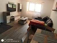 Apartmány - apartmán k pronajmutí - 11 Salaš u Velehradu