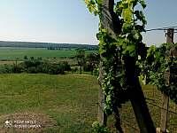 Ubytování u Jarušky na Moravě - chalupa - 35 Tvrdonice