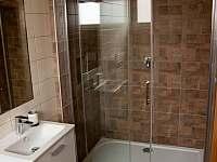 koupelna - chalupa k pronajmutí Drnholec