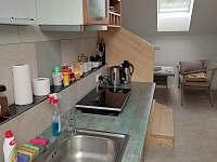 Za vodou - apartmán v podkroví - apartmán - 19 Moravská Nová Ves