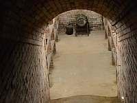 Vinný sklep U Kaňů - chata - 13 Nechory 280