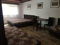 ložnice pro 4 osoby - apartmán k pronajmutí Lanžhot