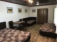 pokoj pro 4 osoby - apartmán ubytování Lanžhot