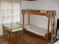 Starý Petřín - chata k pronajmutí - 8