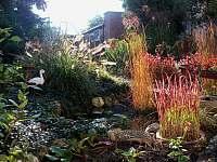 zahrada na podzim - pronájem rekreačního domu Hlohovec
