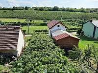 Výhled na okolní vinohrady - Mutěnice