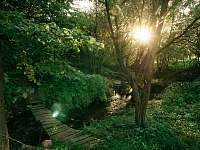Potok za zahradou - pronájem chalupy Skalička u Tišnova