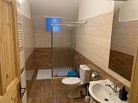 5 x koupelna s wc - chalupa k pronájmu Nové Mlýny