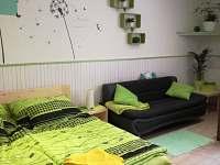 Apartmán mátový - ložnice, televizní koutek - k pronájmu Ostrov u Macochy