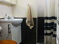 Koupelna - pronájem chaty Buchlovice - Smraďavka