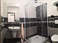 Koupelna - apartmán k pronajmutí Sloup