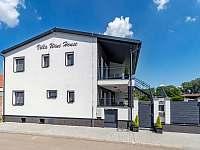 Villa Wine House - vila k pronájmu - 3 Hrušovany nad Jevišovkou