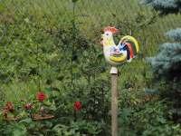 Zahrada dekorace - Řicmanice