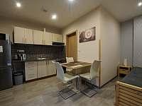 kuchyně apartmán č.3 - pronájem Lednice