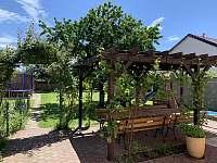 záhrada - pronájem rekreačního domu Dolní Dunajovice