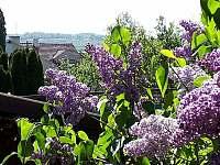 Výhled z terasy na Reistnu - pronájem rekreačního domu Valtice