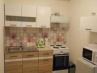 kuchyně apartmán 1 - chalupa k pronajmutí Lanžhot