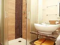 koupelna sklep 2 ap. B - Prušánky - Nechory
