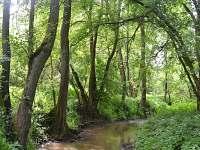 Údolí řeky Bobravy - cca 300 m od chaty