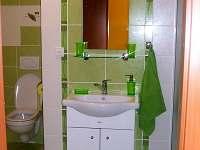 Koupelna - byt 2 + KK - rekreační dům k pronajmutí Lednice