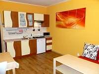 Ubytování v soukromí rodinného domu - rekreační dům k pronájmu - 10 Lednice