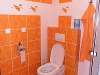 Ubytování v soukromí rodinného domu - rekreační dům k pronájmu - 3 Lednice