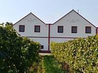 Dolní Dunajovice ubytování 17 lidí  ubytování