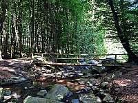 Překrásná okolní příroda - pronájem chaty Ochoz u Brna
