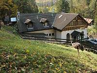 Ranč u Jelena-výborná restaurace a také chov zvířátek - chata k pronajmutí Ochoz u Brna