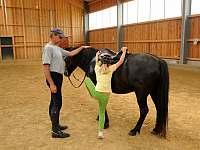 Možnost vodění na koni - Soběsuky - Milovice