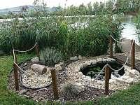 Jezirko s molem u rybníka