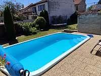 Pohled na bazén a zadní část zahrady - apartmán ubytování Dolní Dunajovice