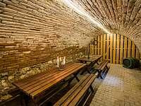 Sklep pro posezení u sklenky vína. Sklep se nachází přímo pod apartmány. - ubytování Dolní Dunajovice