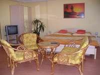 Čtyřlůžkový pokoj v přízemí (+2 přistýlky) - ubytování Milovice u Mikulova