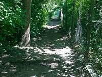 Cesta na chatu, kopec, 150 m vzdušnou čarou - Kníničky