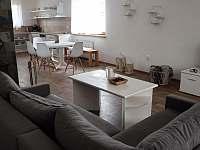 Kuchyň a společenská místnost v jednom z apartmánů - k pronajmutí Bořetice