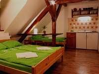 Apartmán ECONOMY - Buchlovice
