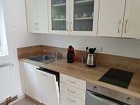 Vybavení: kávovar, el. konvice, el. troba, varná deska, mikrovlnka, myčka - apartmán k pronájmu Rusava