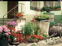 Přední dvorek - pronájem chalupy Horní Věstonice