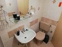 Koupelna se sprchovým koutem - apartmán ubytování Dolni Dunajovice