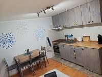 Kuchyňka s jídelním stolem s pohovkou nebo posteli - apartmán k pronájmu Dolni Dunajovice